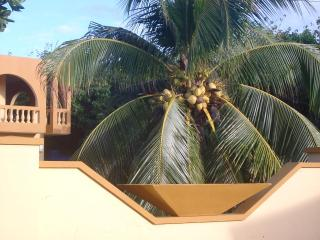 At the Waves - Oceanfront Villas - 3bd/3bath units - Vieques vacation rentals