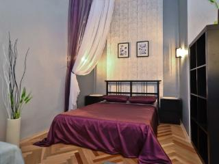 CR101SP - Stylish and comfortable 2-room apt in the center - Saint Petersburg vacation rentals