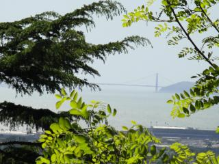 Golden Gate Views- Large Kitchen & Private Laundry - Berkeley vacation rentals