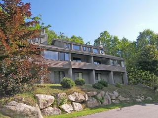C078M - Professionally Managed by Loon Reservation Service - Lincoln vacation rentals