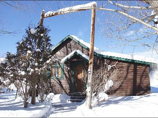 Pet Friendly Cabin with Private Hot Tub - Great Value - No Housekeeping Fees (11883) - Steamboat Springs vacation rentals