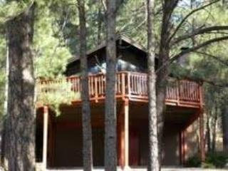 Bear Cave - Ruidoso vacation rentals