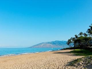 Kihei Alii Kai A401 Oceanview 2/2 Great Rates Great Views! - Kihei vacation rentals