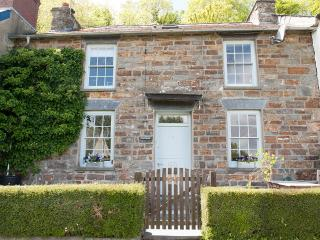 Pet Friendly Holiday Cottage - Fairfield, St Dogmaels - Saint Dogmaels vacation rentals