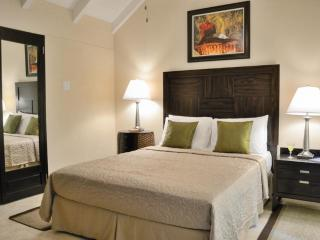 Intimate contemporary Villa in Holetown Barbados! - Saint James vacation rentals