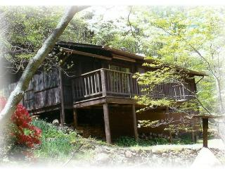 Secluded cabin in Virginia Mountains, near Old Rag - Syria vacation rentals
