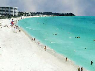 Palm Island Paradise - Siesta Key vacation rentals