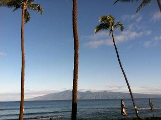 Find Your Bliss in Paradise in our newly renovated Oceanfront Condo - Lahaina vacation rentals