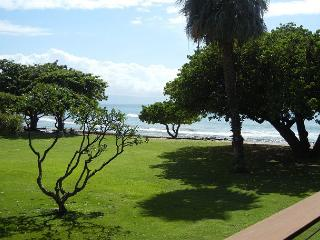 Hale Kai # 211 - Your Home by the Sea in West Maui - Lahaina vacation rentals