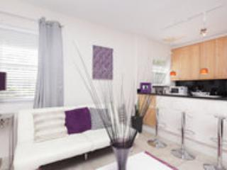Sunny Beautiful 1BR near Beach - Image 1 - Miami Beach - rentals
