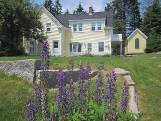 Lupine Ledge -Beautiful, In-town home*wi-fi&cable* - Stonington vacation rentals