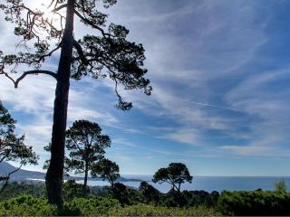 3556 - Stunning Panoramic Ocean, Mountain & Pt. Lobos Views! - Carmel vacation rentals