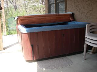 Hot Tub on patio - Alice Curnick