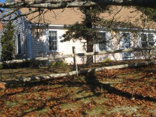 Serene Setting Chatham, 1/2mi. to beach, Wireless - Chatham vacation rentals