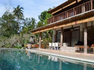 Peaceful & tranquil 3 or 4-bedroom villa in Ubud - Ubud vacation rentals