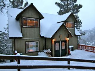Skyview Lodge - passes to private beach clubs - Lake Arrowhead vacation rentals