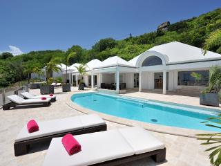 La Rose Des Vents at Grand Cul De Sac, St. Barth - Ocean View, Heated Pool, Jacuzzi, Very Private - Terres Basses vacation rentals