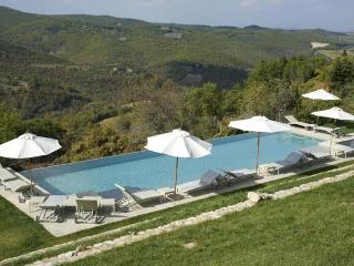 Stunning 2 bedroom apartment near Siena in Tuscany - Castellina In Chianti vacation rentals