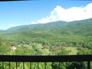 Condo w/ Loft A302 - Gatlinburg vacation rentals