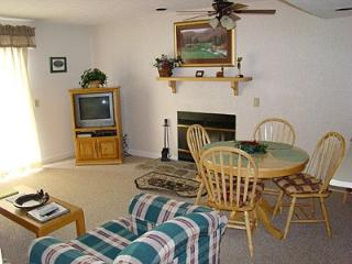 Condo B101 - Gatlinburg vacation rentals