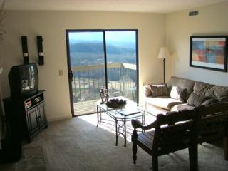 Condo B202 - Gatlinburg vacation rentals