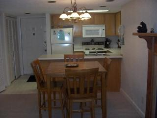 Condo C106 - Gatlinburg vacation rentals