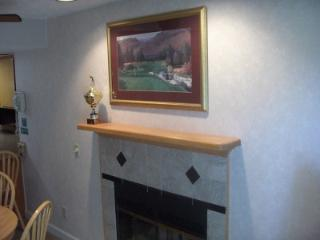 Condo C108 - Gatlinburg vacation rentals