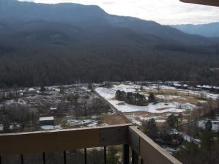 Condo w/ Loft C303 - Gatlinburg vacation rentals