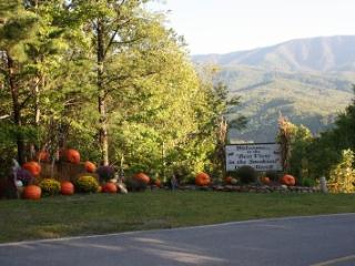 Condo w/ Loft C307 - Gatlinburg vacation rentals