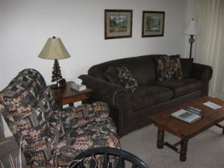 Condo D103 - Gatlinburg vacation rentals