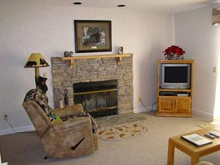 Condo D104 - Gatlinburg vacation rentals