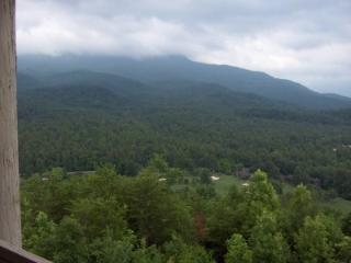 Condo D203 - Gatlinburg vacation rentals