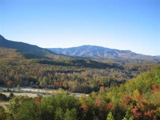 Condo w/ Loft D301 - Gatlinburg vacation rentals