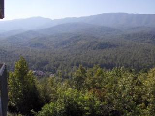Condo w/ Loft D303 - Gatlinburg vacation rentals