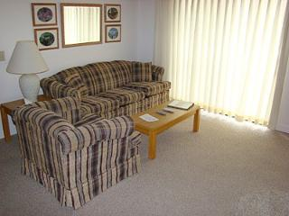 Condo E206 - Gatlinburg vacation rentals