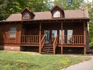 Mountain Mist Cabin - Gatlinburg vacation rentals