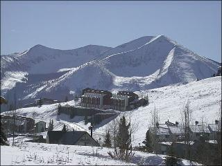 Comfortable Eagle's Nest Condo - Amazing Views (1286) - Crested Butte vacation rentals