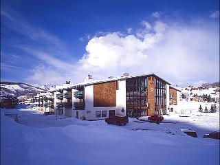 Nicely Furnished Condo - Lots of On Site Amenities (1336) - Crested Butte vacation rentals