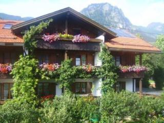 Vacation Apartment in Bad Hindelang - 646 sqft, allergy-friendly, quiet, central (# 3550) - Obermaiselstein vacation rentals