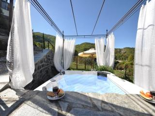 Exclusive property  Florence/Tuscany countryside - Florence vacation rentals