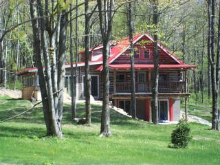 Weyrich Woods Lodge - Ohio vacation rentals