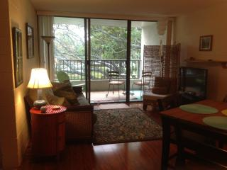 Oceanfront condo, swim with resident sea turtles! - Hilo vacation rentals