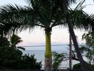 Kailua-Kona OCEANFRONT on Alii Dr.!  2nd level Ocean view, elevator, too - Kalaoa vacation rentals