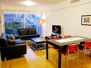 2 Bedroom Apartment in the Heart of Palermo Hollywood - Buenos Aires vacation rentals