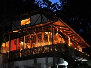 Designer Jungle House , Caribbean Coast Costa Rica - Manzanillo vacation rentals