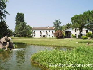 Luxury villa with pool ideal up to 12 guests - Abano Terme vacation rentals