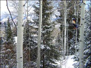 Snowmass - Ski-in/Ski-out (2103) - Aspen vacation rentals