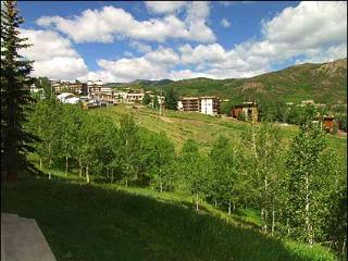 Snowmass - Ski-in/Ski-out (2116) - Aspen vacation rentals