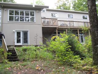 Bat Lake Cottage - Minden vacation rentals