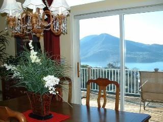Best Views Over Clear Lake-Wine Country-Sleeps 6 - Lucerne vacation rentals